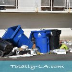 Failed LA recycling program