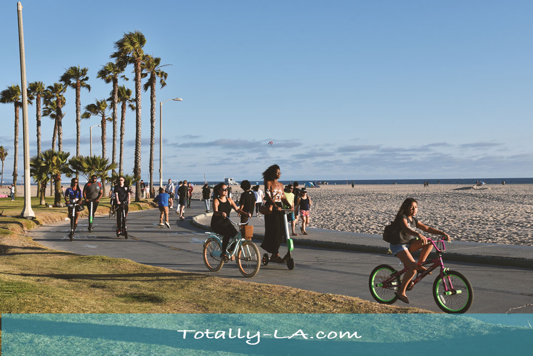 Daily Photo: Tourists Enjoying Venice Beach - Totally LA